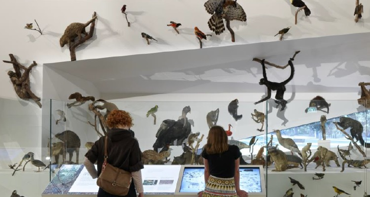 Melbourne Museum enhances the customer parking experience with pre-booking