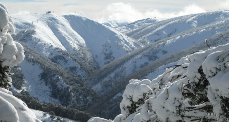 Mt Hotham streamlines resort entry experience with virtual permit solution